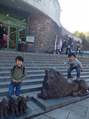 多摩動物園2013年2月2枚目